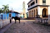 Man and horse on Plaza Mayor
