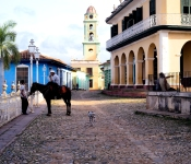 Man and horse on Plaza Mayor
