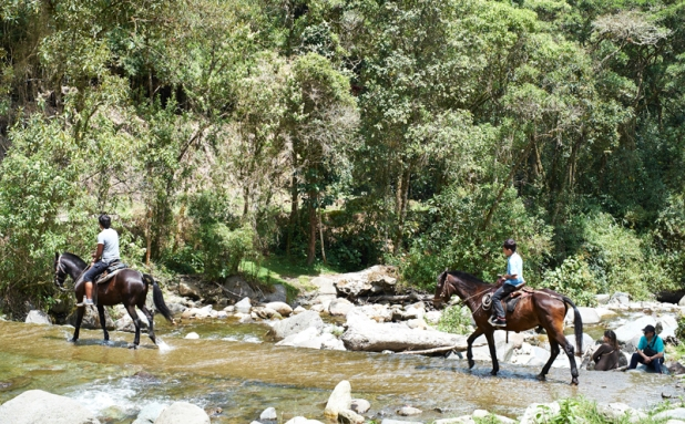 Riding in Cocora valley