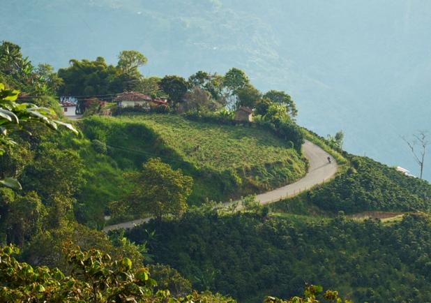 The road between Salamina and Aguadas