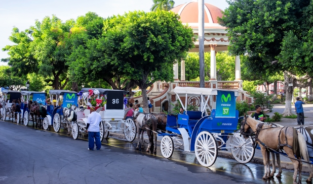 Horses and carriages at the main square