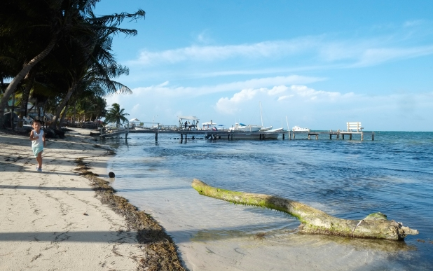 Running on the shore in Caye Caulker