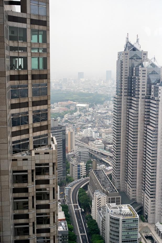 View from Tokyo Metrpolitan Building