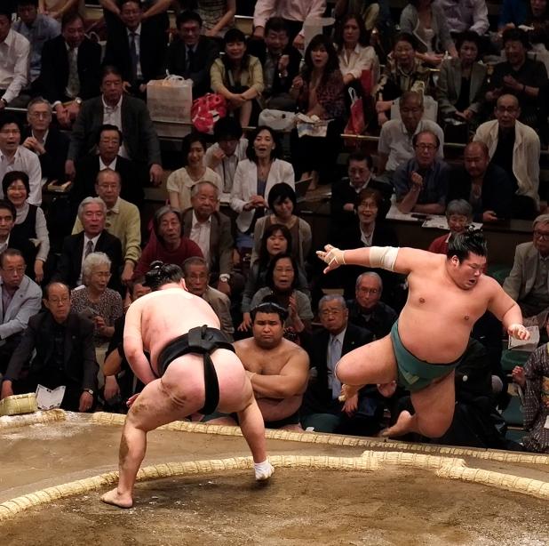 Beware flying Sumo wrestler